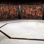 MMA: veja os maiores lutadores brasileiros desse esporte